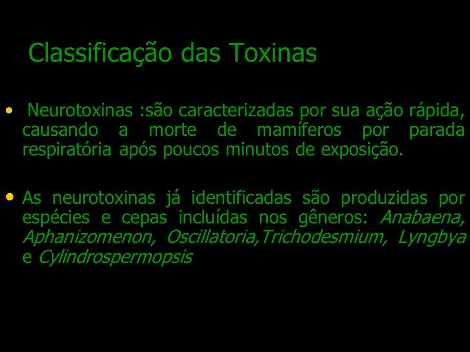 Classificação das Toxinas Neurotoxinas :são caracterizadas por sua ação rápida, causando a morte de mamíferos por parada respiratória após poucos minu