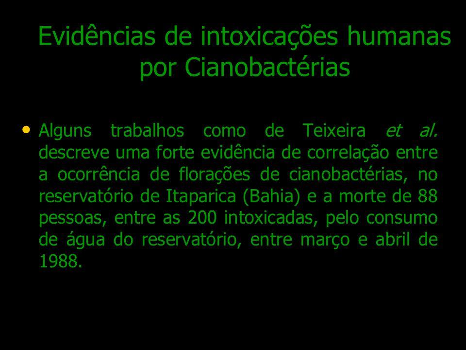Evidências de intoxicações humanas por Cianobactérias Alguns trabalhos como de Teixeira et al. descreve uma forte evidência de correlação entre a ocor