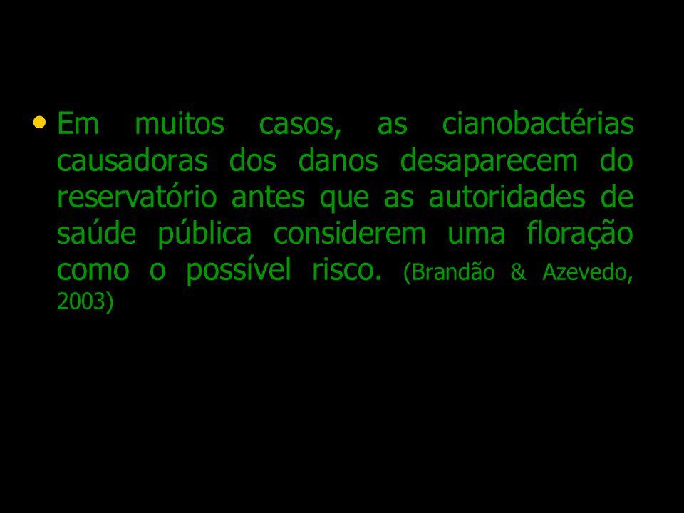 Em muitos casos, as cianobactérias causadoras dos danos desaparecem do reservatório antes que as autoridades de saúde pública considerem uma floração