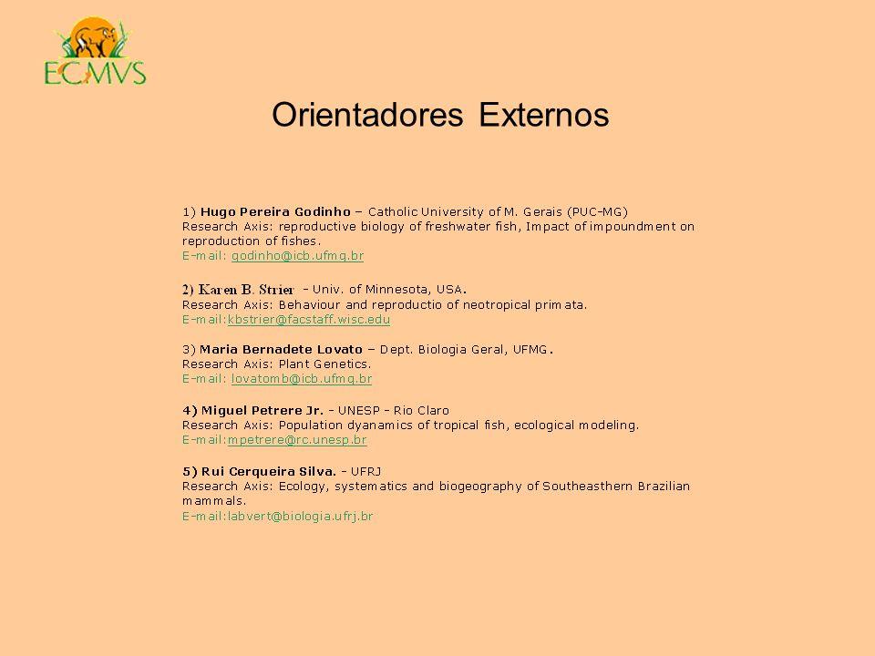 Orientadores Externos