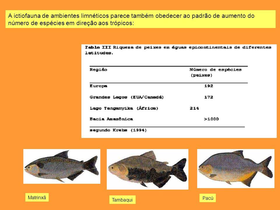 A ictiofauna de ambientes limnéticos parece também obedecer ao padrão de aumento do número de espécies em direção aos trópicos: Tambaqui Pacú Matrinxã