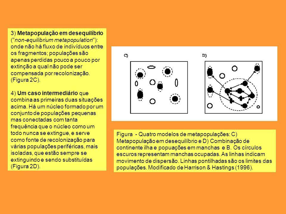 Uma alternativa aos modelos de metapopulação é o chamado sistema fonte-escoadouro ( source-sink systems ).