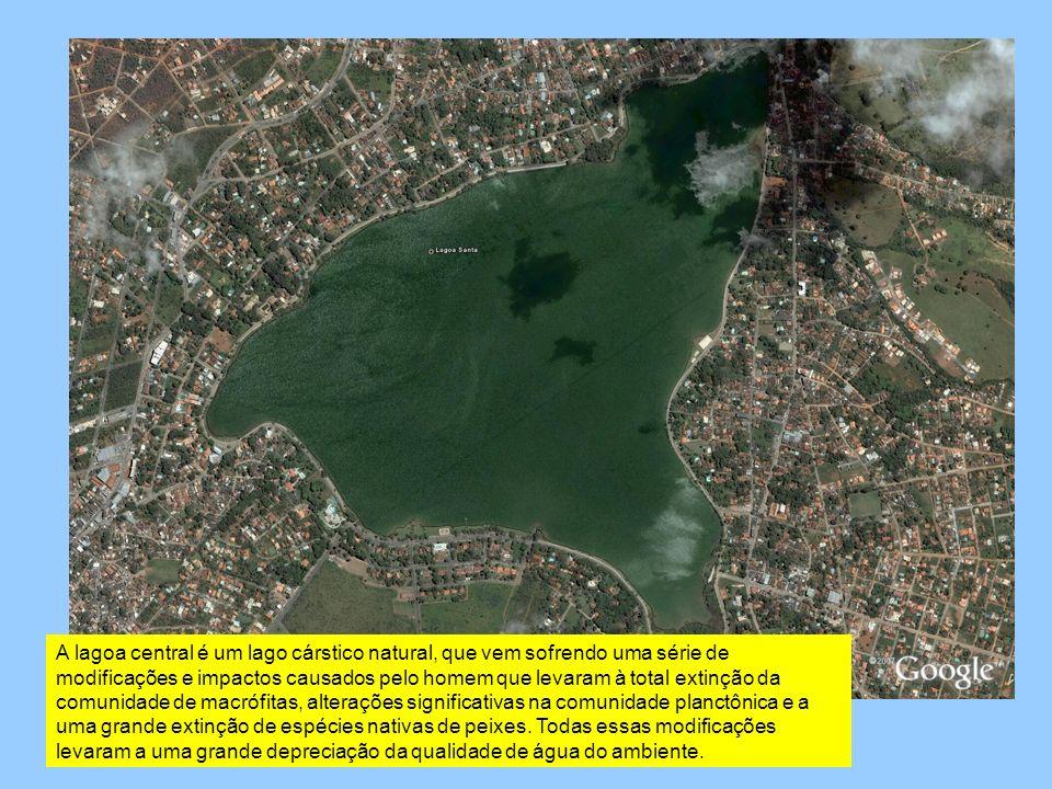 A lagoa central é um lago cárstico natural, que vem sofrendo uma série de modificações e impactos causados pelo homem que levaram à total extinção da