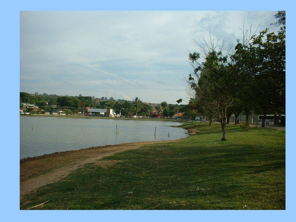 Limnologia Geral Lagoa Santa Novembro 2007