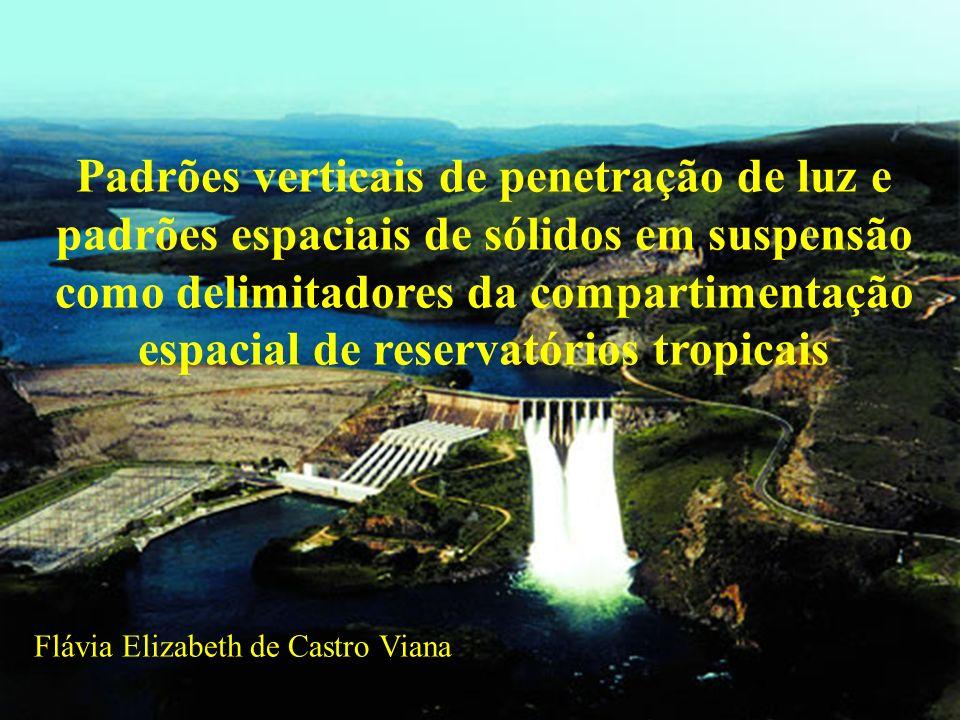 Zona eufótica e transparência da água É a porção iluminada da coluna dágua.