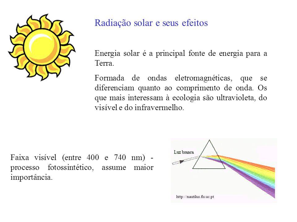 Camada de ozônio impede que altas taxas de radiação UV atinjam a superfície terrestre http://br.geocities.com/saladefisica5/leituras/Ozonio.gif
