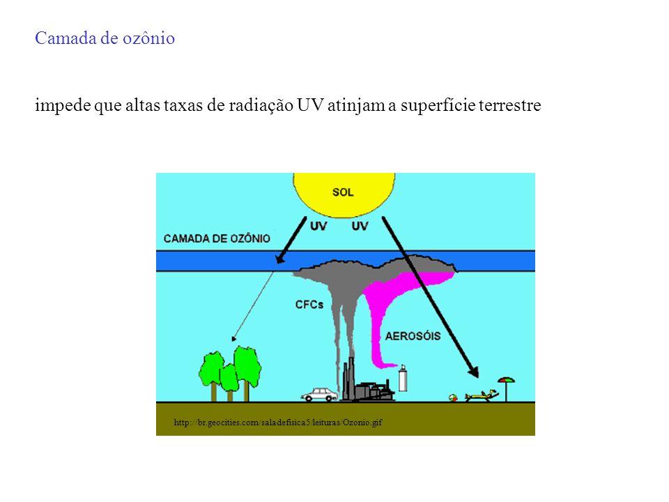 Universidade de Magallanes (Chi) e o Instituto Nacional de Pesquisas Espaciais (Bra) têm feito medições da coluna total de ozônio e da radiação UV-B (280-320 nm) em Punta Arenas, Chile.