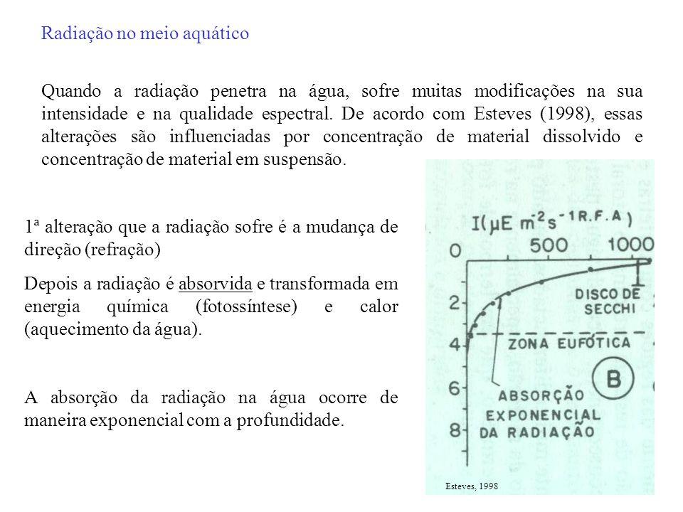 Pelo gráfico vê-se um gradiente horizontal com diminuição da correlação em direção a zona rio e formação de 3 compartimentos.