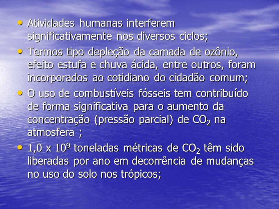 Atividades humanas interferem significativamente nos diversos ciclos; Atividades humanas interferem significativamente nos diversos ciclos; Termos tip