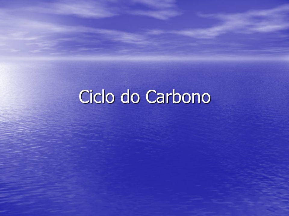 Dióxido de Carbono Os reservatórios de CO 2 na atmosfera, litosfera e oceanos são extremamente grandes; Os reservatórios de CO 2 na atmosfera, litosfera e oceanos são extremamente grandes; As trocas de CO 2 entre a atmosfera e a biosfera terrestre ocorrem principalmente através da fotossíntese e a respiração por plantas; As trocas de CO 2 entre a atmosfera e a biosfera terrestre ocorrem principalmente através da fotossíntese e a respiração por plantas; CO 2 no ar, nos últimos 200.000 anos, variou entre 200 e 280g/t.