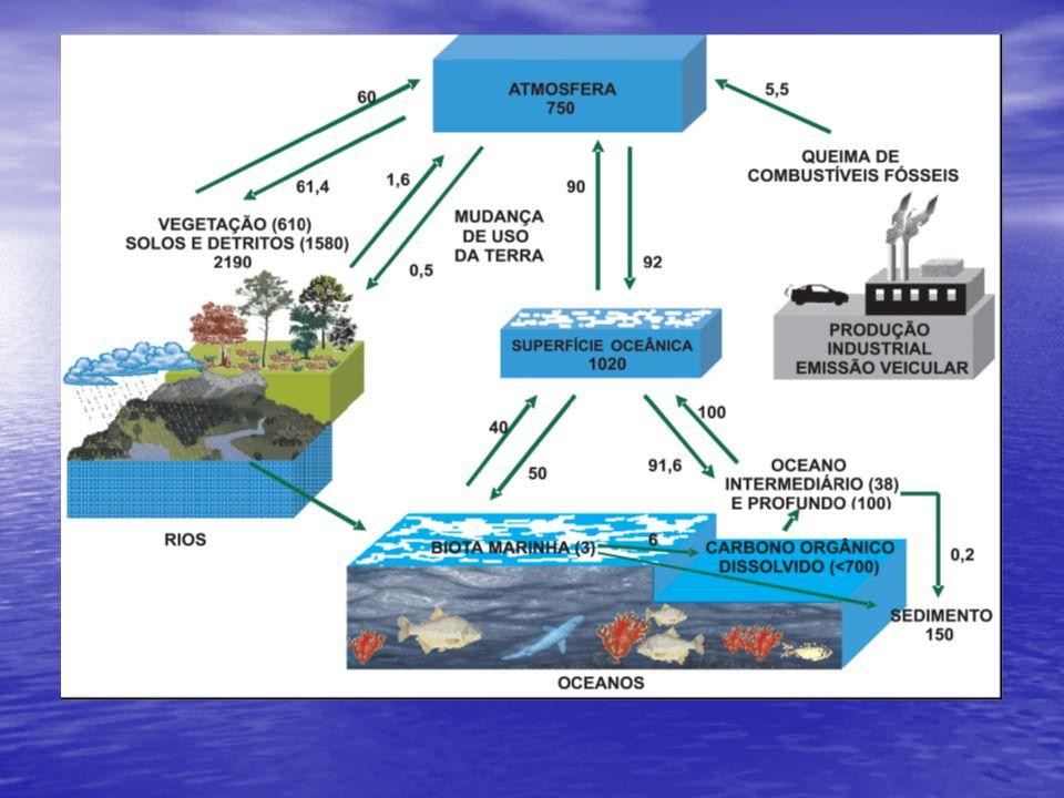 Metano Concentração permaneceu praticamente estável durante centenas de anos em cerca de 700 ml/m3; Concentração permaneceu praticamente estável durante centenas de anos em cerca de 700 ml/m3; As fontes de emissão de metano de origem antrópica envolvem decomposição de lixo em aterros sanitários, queima de biomassa, mineração de carvão, processamento de petróleo e de gás natural; As fontes de emissão de metano de origem antrópica envolvem decomposição de lixo em aterros sanitários, queima de biomassa, mineração de carvão, processamento de petróleo e de gás natural; Anualmente são introduzidos na atmosfera, pelas diversas fontes, naturais ou antrópicas, entre 500 e 600 Mt de CH 4, enquanto são removidas de 460 a 580 Mt.