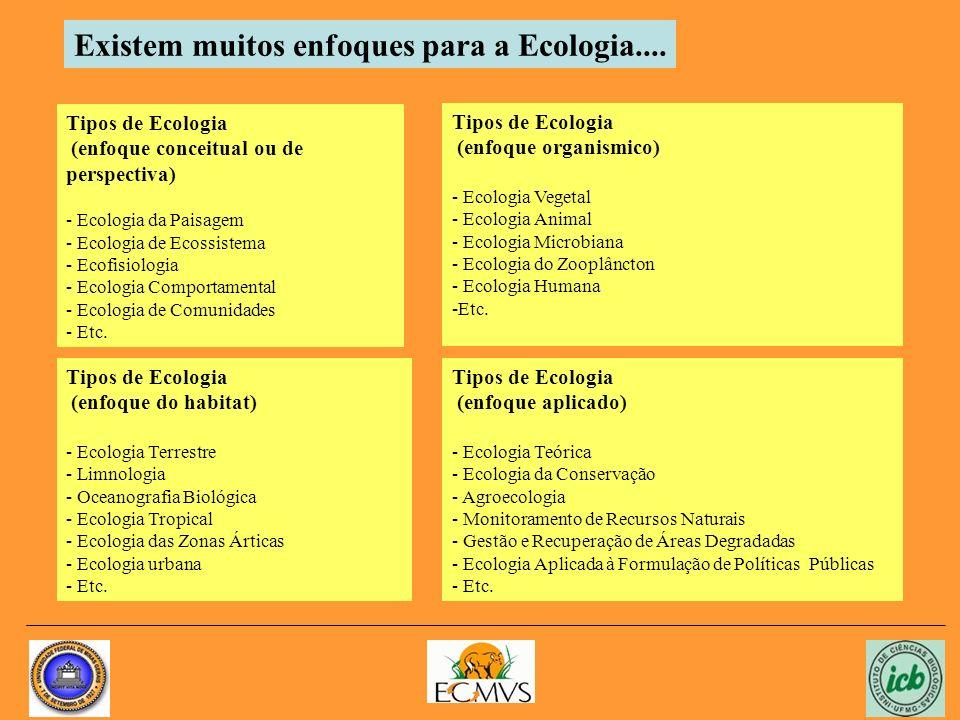 Tipos de Ecologia (enfoque conceitual ou de perspectiva) - Ecologia da Paisagem - Ecologia de Ecossistema - Ecofisiologia - Ecologia Comportamental - Ecologia de Comunidades - Etc.