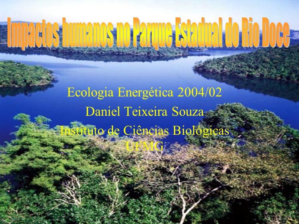 O Parque Estadual do Rio Doce possui uma área de 35976.43 há com um perímetro de 120 km.