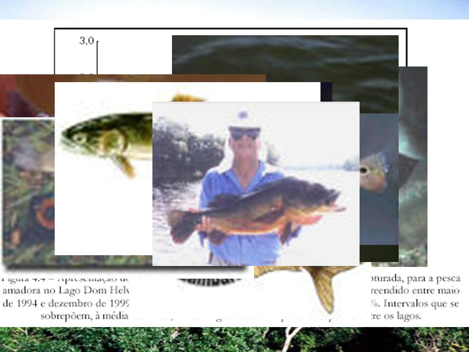 Uso da pesca como medida de manejo