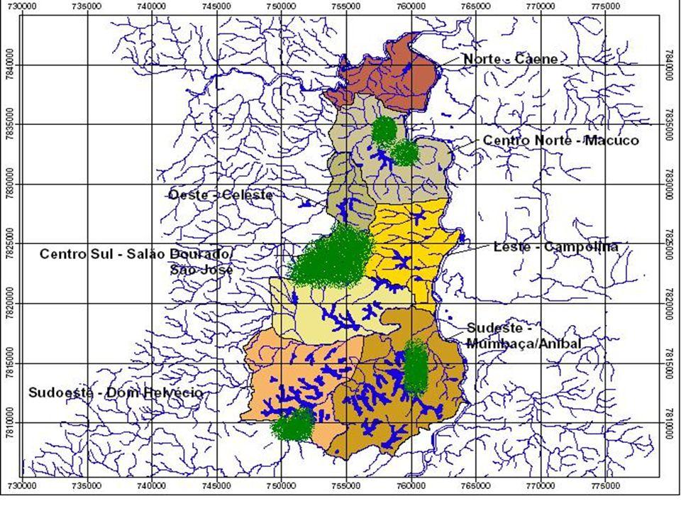 Diagnóstico de algumas comunidades Vegetação Para Silva (2001) o PERD representa o mais extenso remanescente de Floresta Atlântica em MG A cobertura vegetal se constitui de um mosaico de tipologias vegetais, 10 categorias de vegetação Floresta secundária – estágio médio de sucessão – urucum e brejaúba, além de muitos cipós e bambús Um pouco mais avançada – Joanesia principes e Neuraputia alba Na floresta inicialmente classificada como primária – mais epífitas e maior diversidade de espécies, sendo a dominância de algumas espécies menor – jequitibás, ipê-peroba, lauráceas e sapotáceas