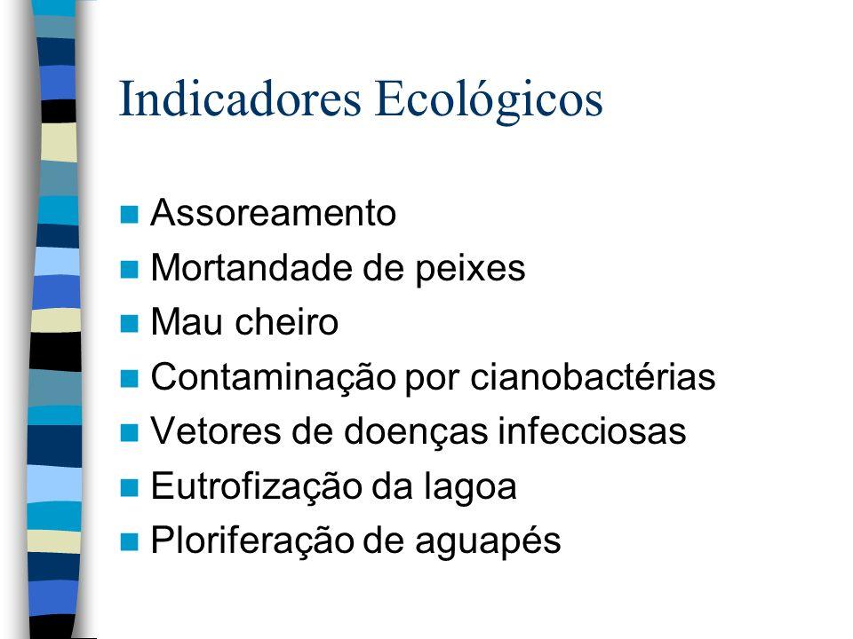 Década de 90 Começam os grandes programas de recuperação da Lagoa PROSAN - Fundo de Saneamento Ambiental das Bacias dos Ribeirões Arrudas e Onça Publicado no Diário do Executivo Minas Gerais em 07/01/1994, concluído em 1998.