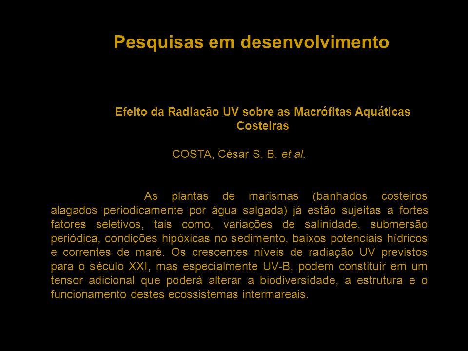 Pesquisas em desenvolvimento Efeito da Radiação UV sobre as Macrófitas Aquáticas Costeiras COSTA, César S. B. et al. As plantas de marismas (banhados