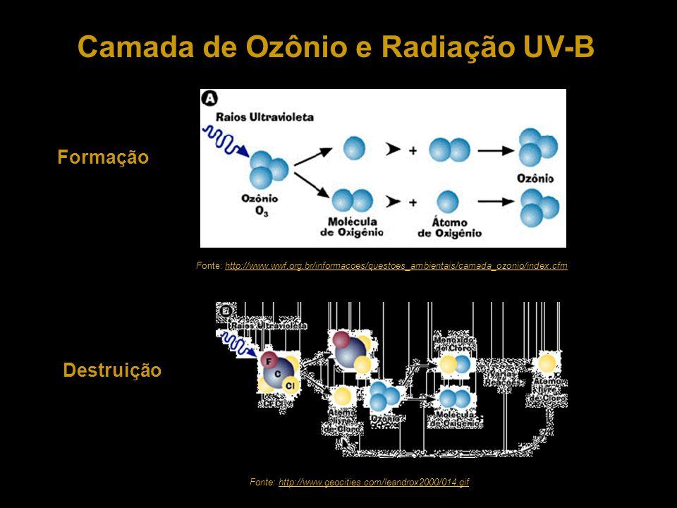 Camada de Ozônio e Radiação UV-B Formação Destruição Fonte: http://www.wwf.org.br/informacoes/questoes_ambientais/camada_ozonio/index.cfmhttp://www.ww