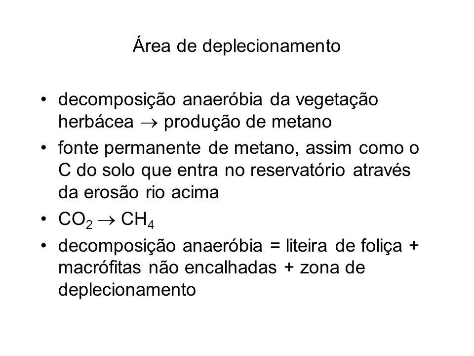 Área de deplecionamento decomposição anaeróbia da vegetação herbácea produção de metano fonte permanente de metano, assim como o C do solo que entra n