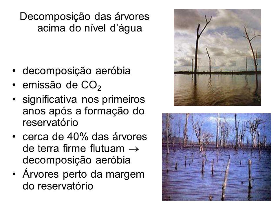 Decomposição das árvores acima do nível dágua decomposição aeróbia emissão de CO 2 significativa nos primeiros anos após a formação do reservatório ce