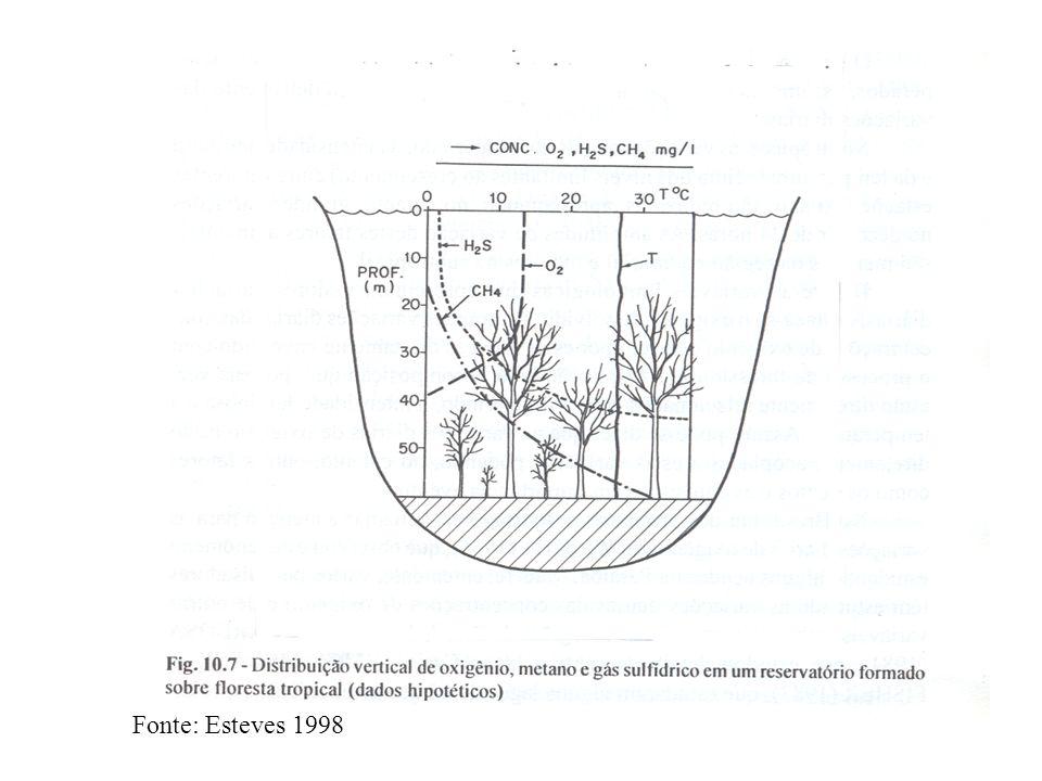 Polímeros complexos (lipídeos, polissacarídeos, proteínas, ácidos nucleicos) HIDRÓLISE Monômeros e Oligômeros (ácidos graxos, açúcares, aminoácidos, purinas e pirimidinas) FERMENTAÇÂO Ácidos graxos, álcoois, metilaminas, CO 2, H 2 Desnitrificação Metanogênese Redução do sulfato Nitrato CO 2, acetato Sulfato N 2 CH 4 H 2 S Decomposição anaeróbia