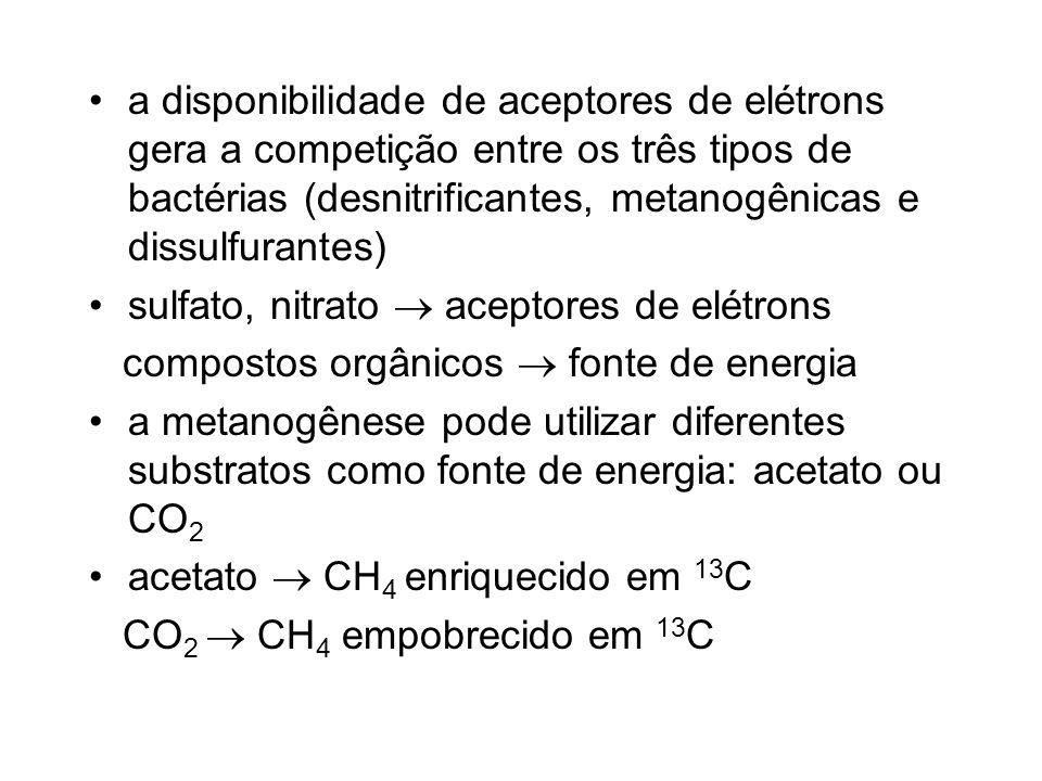 Formas de emissão de metano difusão resultado da oxidação bacteriana na coluna dágua + processos de produção no sedimento sofre alterações em sua composição isotópica devido à atuação das bactérias metanotróficas (oxidação liberação de CO 2 ) ebulição (bolhas) não sofre alteração em sua composição isotópica bolhas com maior quantidade de 12 C sugerindo que a principal via metanogênica é a redução do CO 2
