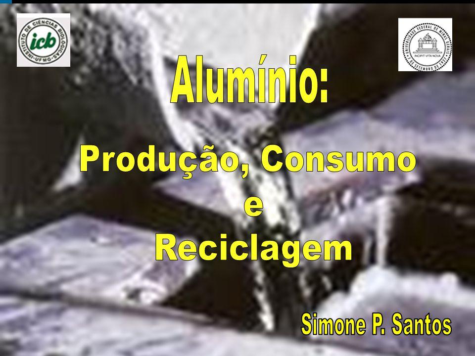 Produção, Consumo e Reciclagem Simone P. Santos