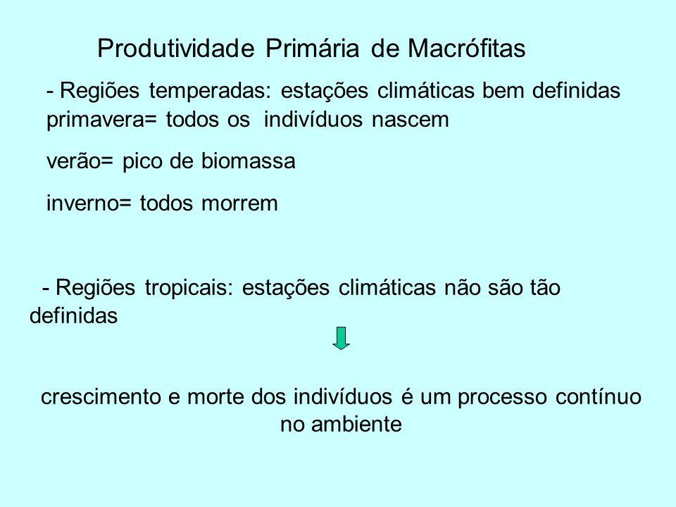 Produtividade Primária de Macrófitas - Regiões temperadas: estações climáticas bem definidas primavera= todos os indivíduos nascem verão= pico de biom