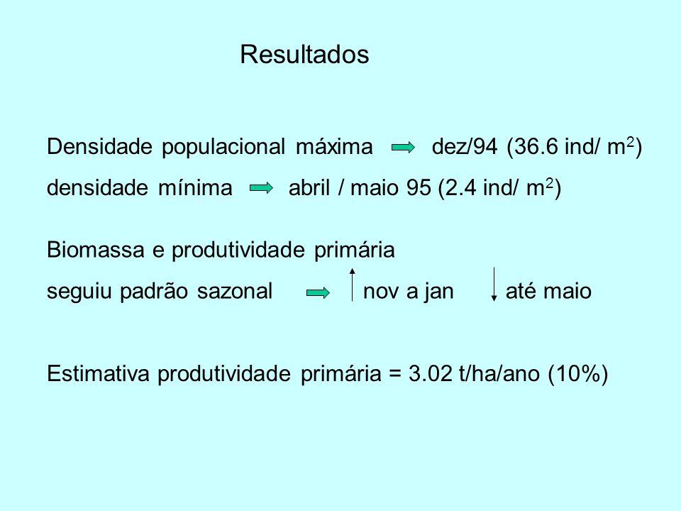 Resultados Densidade populacional máxima dez/94 (36.6 ind/ m 2 ) densidade mínima abril / maio 95 (2.4 ind/ m 2 ) Biomassa e produtividade primária se