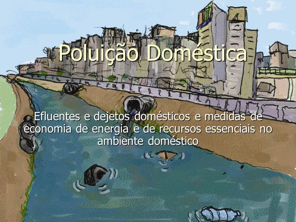 Poluição Doméstica Efluentes e dejetos domésticos e medidas de economia de energia e de recursos essenciais no ambiente doméstico