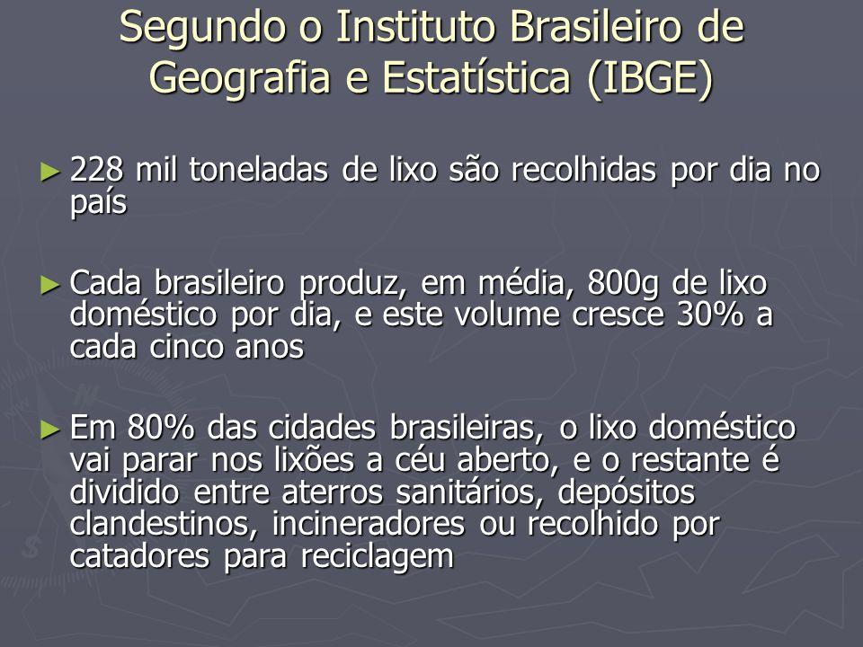 Segundo o Instituto Brasileiro de Geografia e Estatística (IBGE) 228 mil toneladas de lixo são recolhidas por dia no país 228 mil toneladas de lixo sã