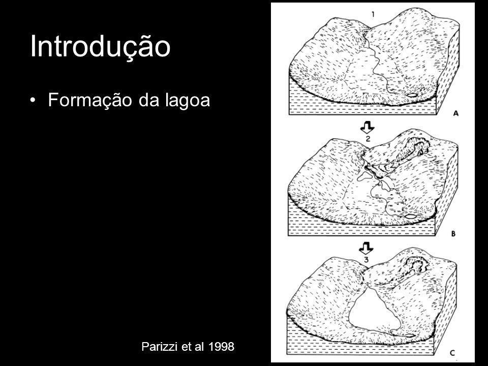 Introdução Formação da lagoa Parizzi et al 1998
