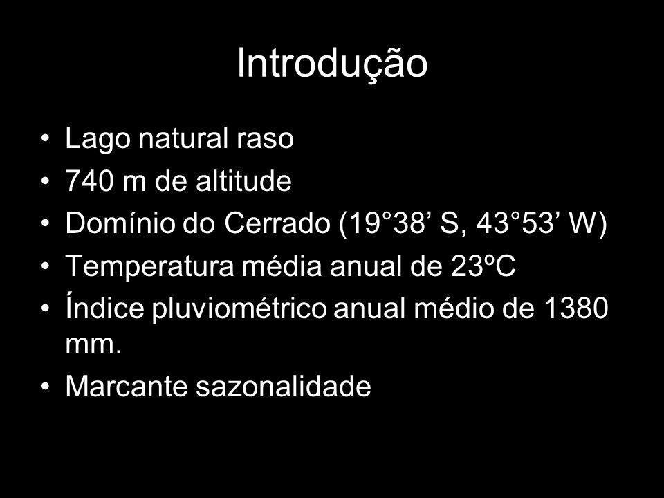 Introdução Lago natural raso 740 m de altitude Domínio do Cerrado (19°38 S, 43°53 W) Temperatura média anual de 23ºC Índice pluviométrico anual médio de 1380 mm.