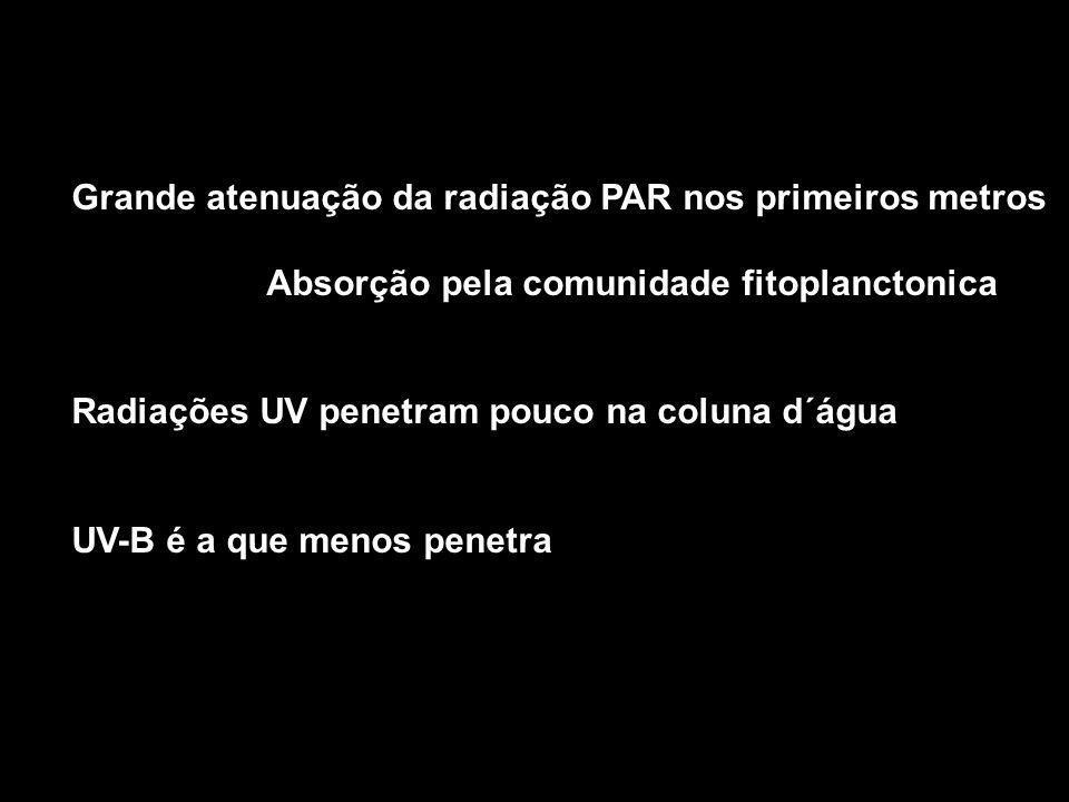 Grande atenuação da radiação PAR nos primeiros metros Absorção pela comunidade fitoplanctonica Radiações UV penetram pouco na coluna d´água UV-B é a que menos penetra
