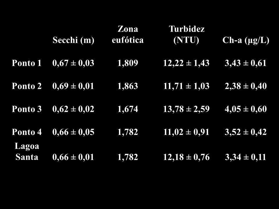 Secchi (m) Zona eufótica Turbidez (NTU)Ch-a (μg/L) Ponto 1 0,67 0,03 1,809 12,22 1,433,43 0,61 Ponto 2 0,69 0,01 1,863 11,71 1,032,38 0,40 Ponto 3 0,62 0,02 1,674 13,78 2,594,05 0,60 Ponto 4 0,66 0,05 1,782 11,02 0,913,52 0,42 Lagoa Santa 0,66 0,01 1,782 12,18 0,763,34 0,11