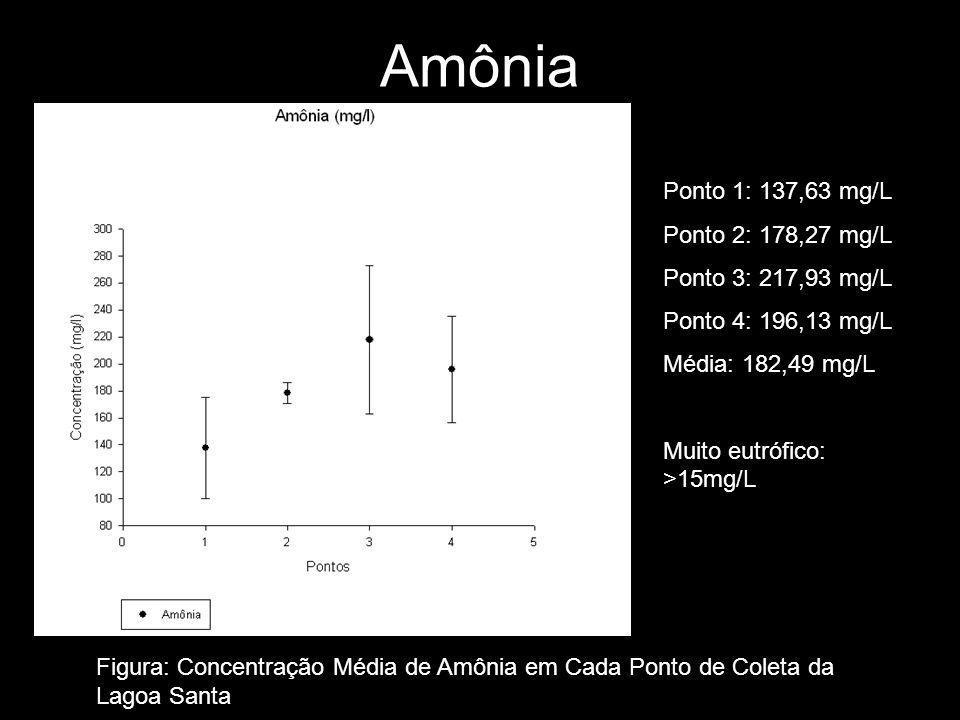 Amônia Ponto 1: 137,63 mg/L Ponto 2: 178,27 mg/L Ponto 3: 217,93 mg/L Ponto 4: 196,13 mg/L Média: 182,49 mg/L Muito eutrófico: >15mg/L Figura: Concentração Média de Amônia em Cada Ponto de Coleta da Lagoa Santa