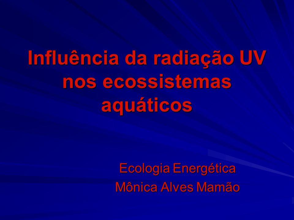 Influência da radiação UV nos ecossistemas aquáticos Ecologia Energética Mônica Alves Mamão