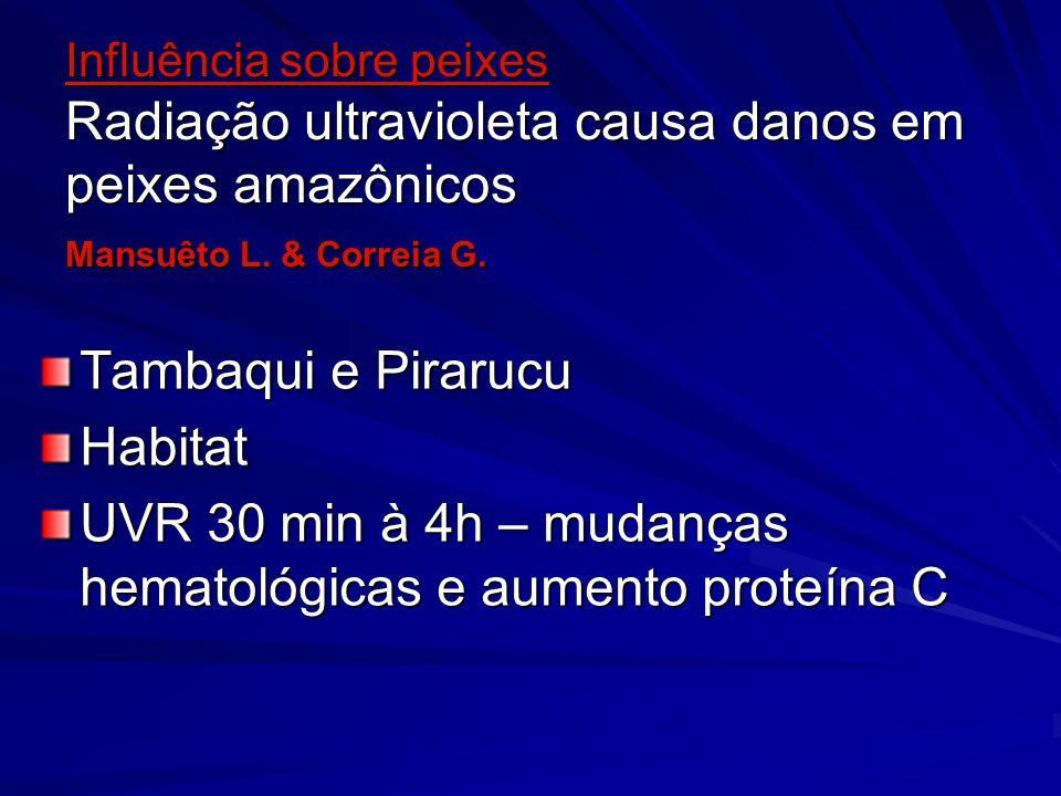 Influência sobre peixes Radiação ultravioleta causa danos em peixes amazônicos Mansuêto L. & Correia G. Tambaqui e Pirarucu Habitat UVR 30 min à 4h –