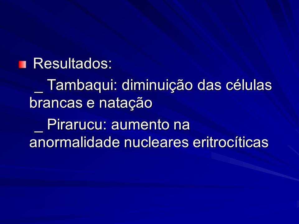Resultados: Resultados: _ Tambaqui: diminuição das células brancas e natação _ Tambaqui: diminuição das células brancas e natação _ Pirarucu: aumento
