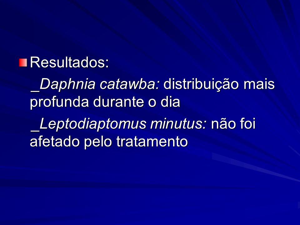 Resultados: _Daphnia catawba: distribuição mais profunda durante o dia _Daphnia catawba: distribuição mais profunda durante o dia _Leptodiaptomus minu