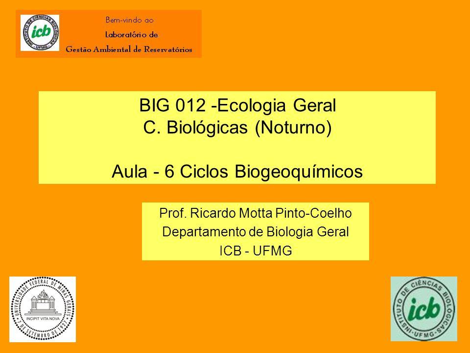 BIG 012 -Ecologia Geral C. Biológicas (Noturno) Aula - 6 Ciclos Biogeoquímicos Prof. Ricardo Motta Pinto-Coelho Departamento de Biologia Geral ICB - U