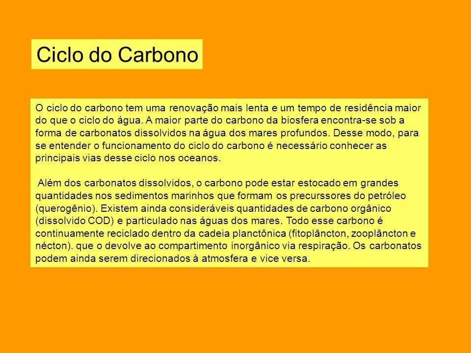 Ciclo do Carbono O ciclo do carbono tem uma renovação mais lenta e um tempo de residência maior do que o ciclo do água. A maior parte do carbono da bi