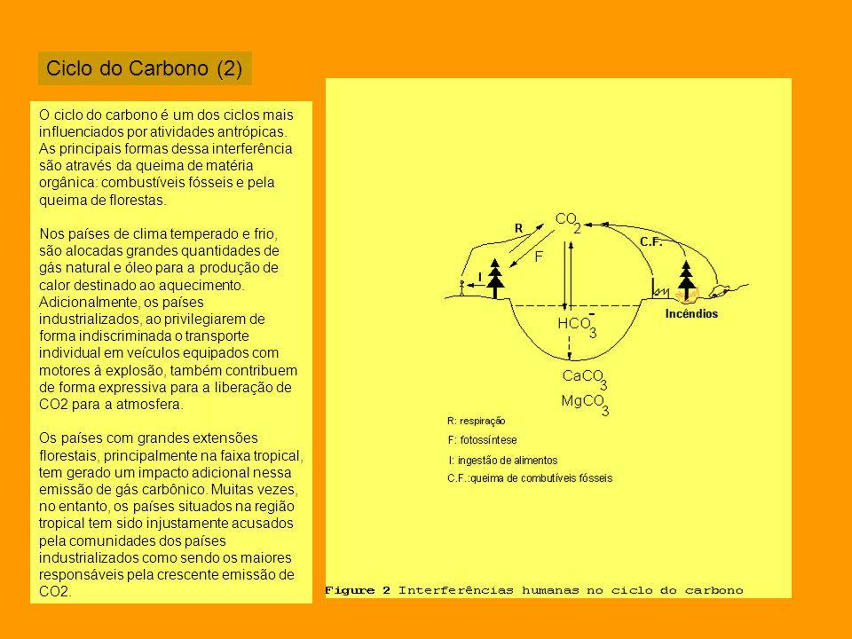 Ciclo do Carbono (2) O ciclo do carbono é um dos ciclos mais influenciados por atividades antrópicas. As principais formas dessa interferência são atr