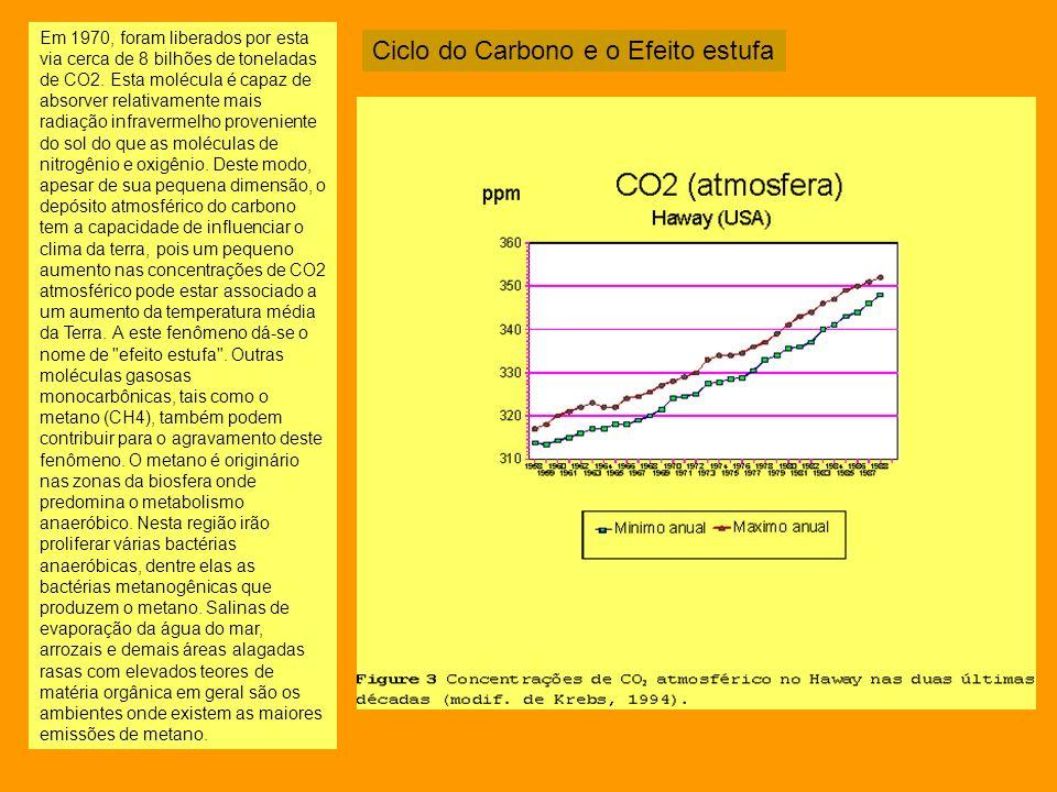 Em 1970, foram liberados por esta via cerca de 8 bilhões de toneladas de CO2. Esta molécula é capaz de absorver relativamente mais radiação infraverme