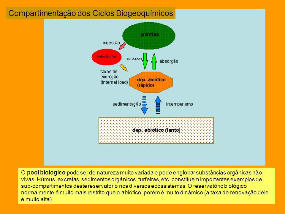 Tipologia dos Ciclos Biogeoquímicos
