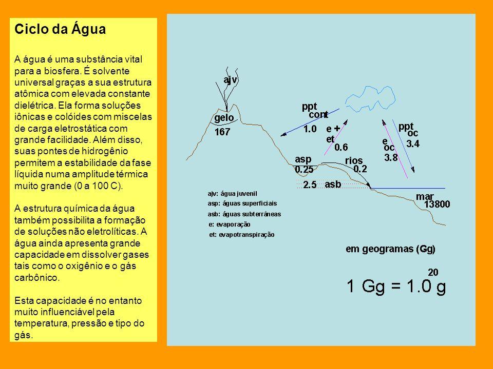 Comportamento Anômalo da Água e a manutenção da vida Outra característica fundamental à vida da água refere-se ao seu comportamento anômalo em relação à densidade.