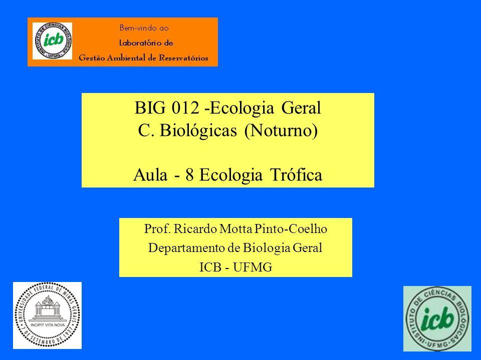 BIG 012 -Ecologia Geral C. Biológicas (Noturno) Aula - 8 Ecologia Trófica Prof. Ricardo Motta Pinto-Coelho Departamento de Biologia Geral ICB - UFMG