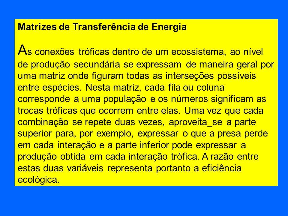 Matrizes de Transferência de Energia A s conexões tróficas dentro de um ecossistema, ao nível de produção secundária se expressam de maneira geral por