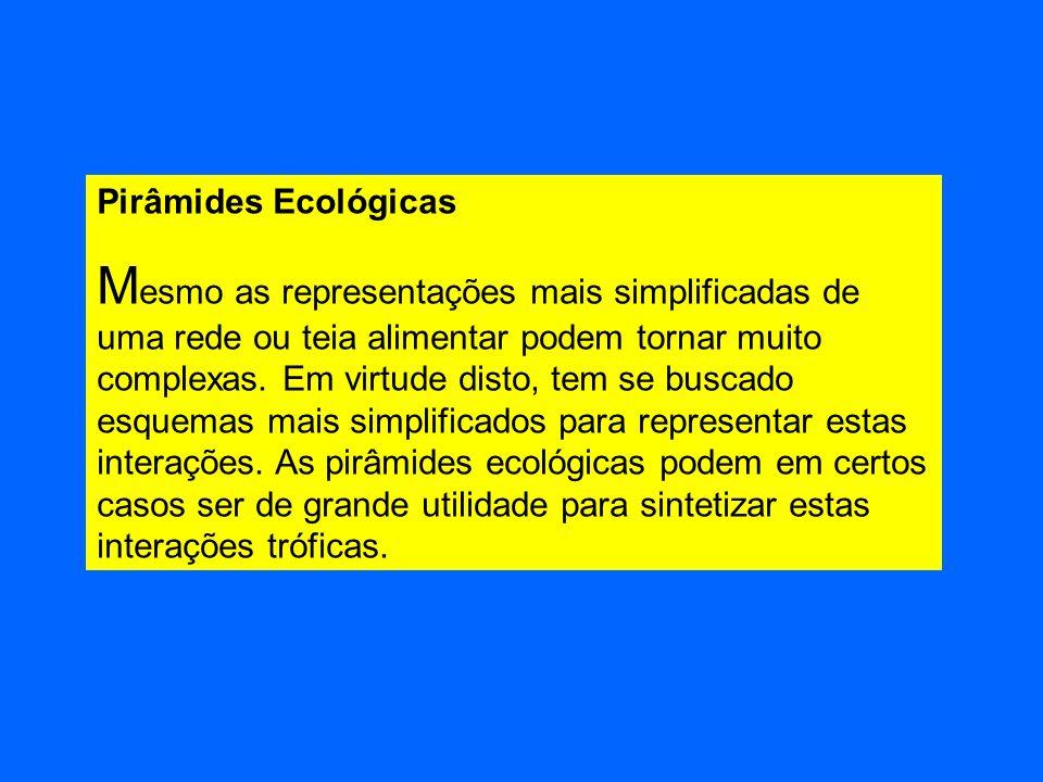 Pirâmides Ecológicas M esmo as representações mais simplificadas de uma rede ou teia alimentar podem tornar muito complexas. Em virtude disto, tem se