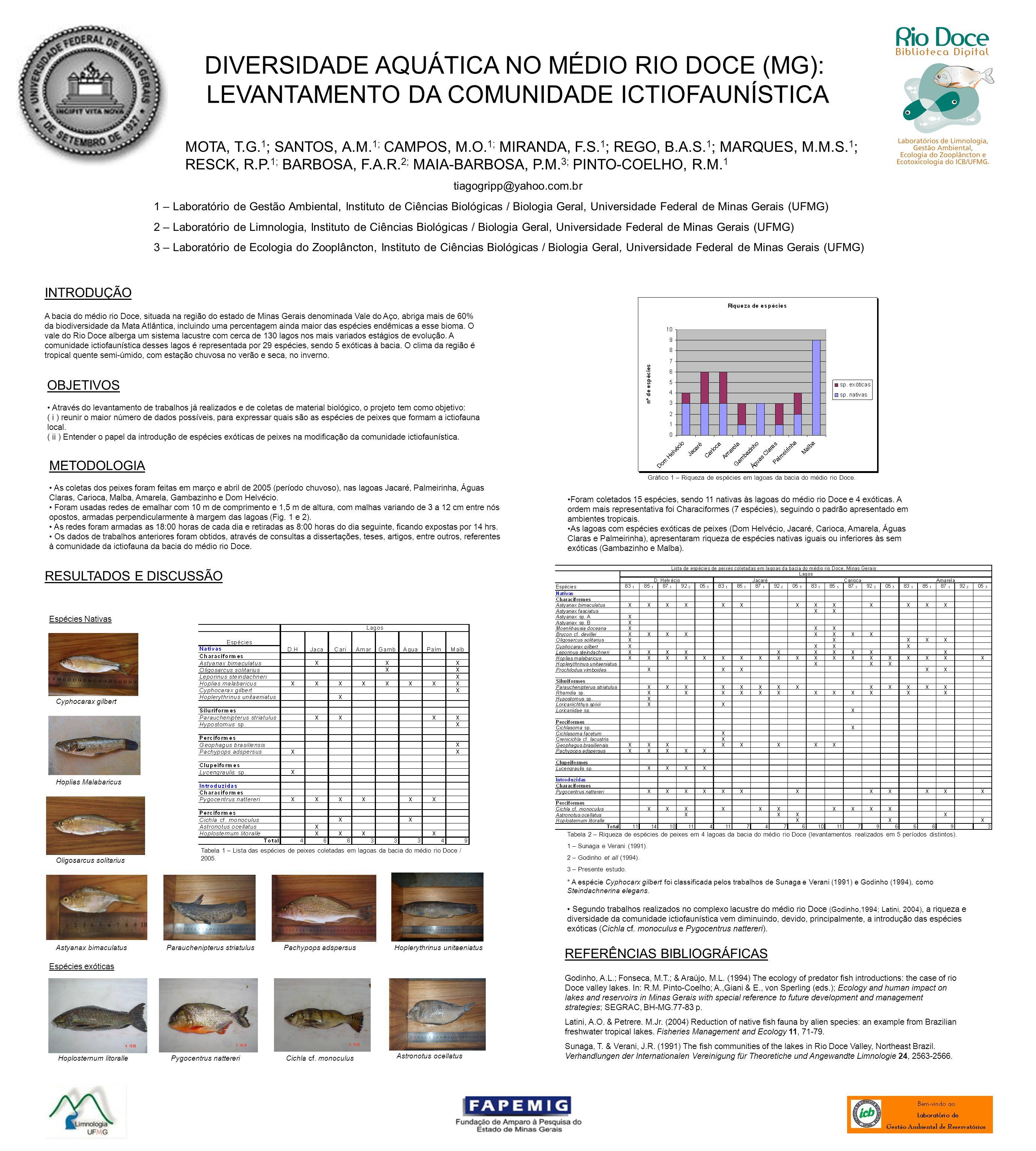DIVERSIDADE AQUÁTICA NO MÉDIO RIO DOCE (MG): LEVANTAMENTO DA COMUNIDADE ICTIOFAUNÍSTICA MOTA, T.G. 1 ; SANTOS, A.M. 1; CAMPOS, M.O. 1; MIRANDA, F.S. 1